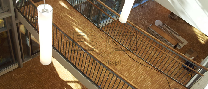 Balustarde made of powder-coated steel with wooden handrail